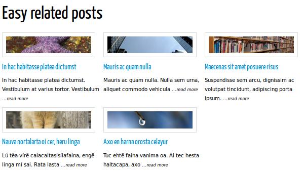 WordPress. Easy Related Posts — плагин для вывода похожих постов