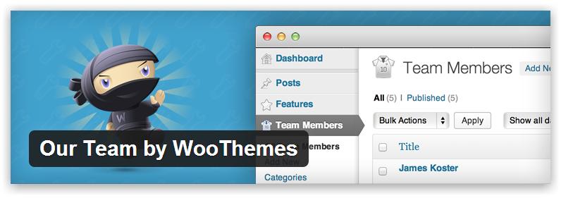 Наша команда — плагин для WordPress от WooCommerce