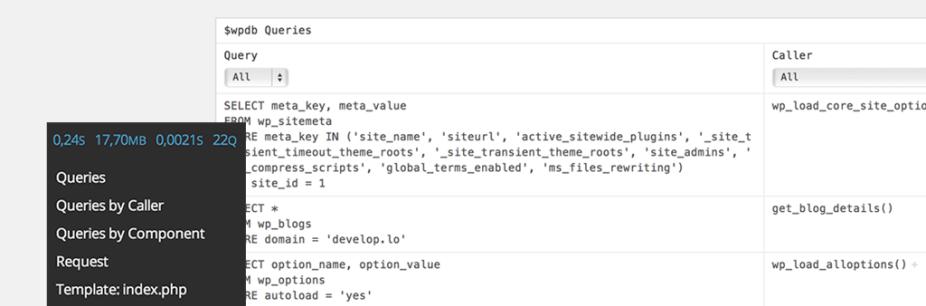 WordPress. Query Monitor покажет вам все запросы в базу данных на текущей странице