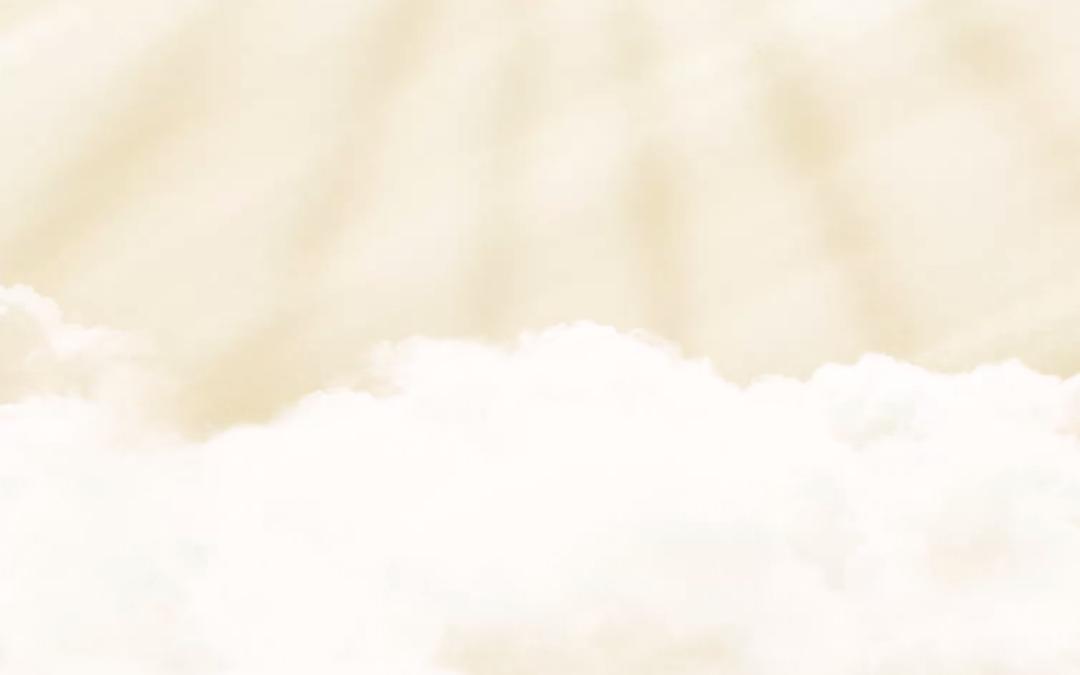 CoverVid — компонент для создания видео в фоне страницы (HTML5, jQuery)