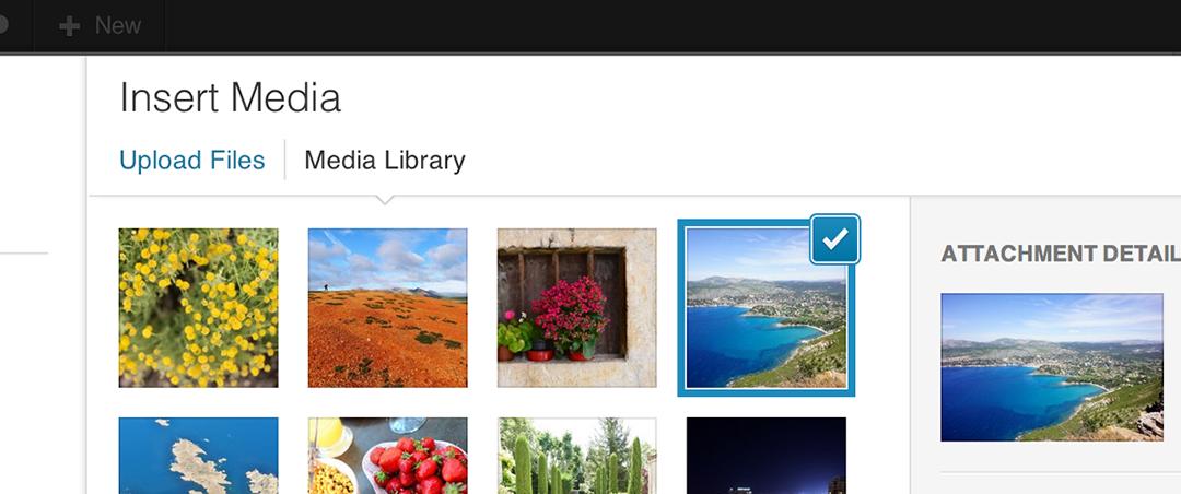 Добавление загрузчика (Media uploader) к произвольному полю WordPress
