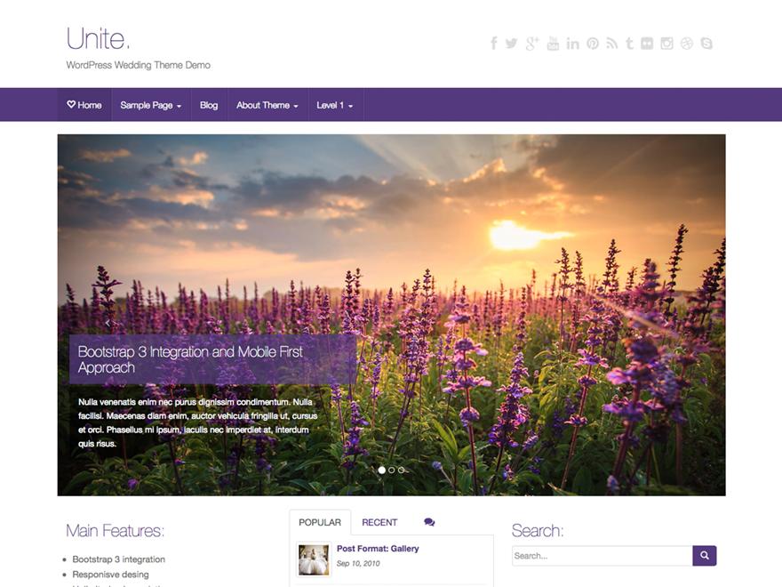 Unite — тема для WordPress. Гибкая, универсальная и надежная