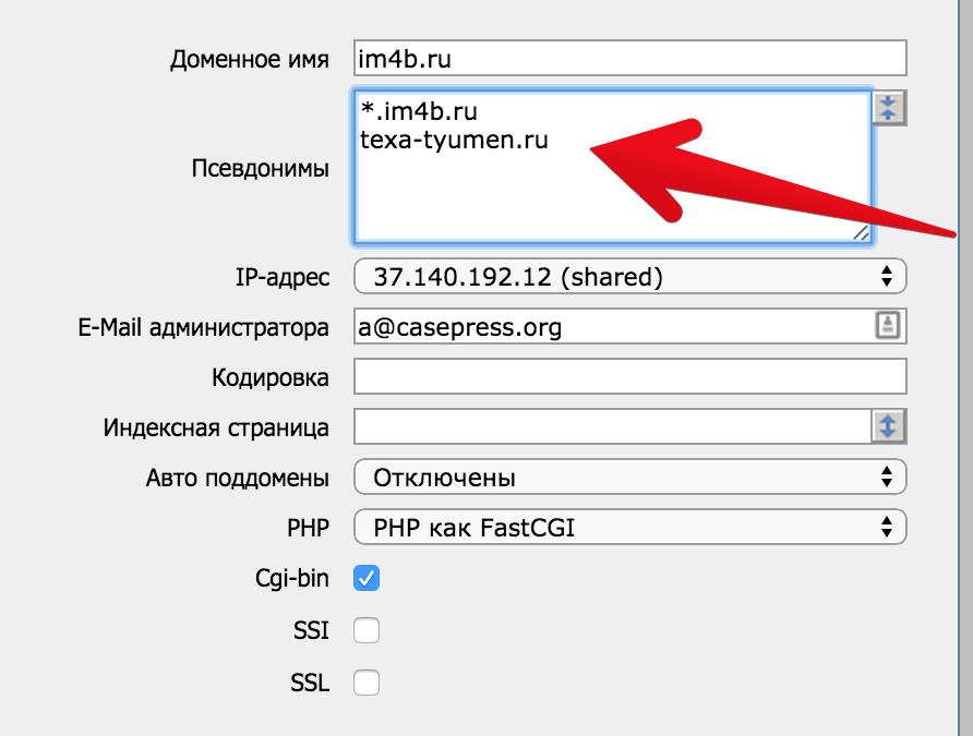 Как настроить отдельный домен второго уровня для сайта в сети WordPress (multisite) на хостинге reg.ru