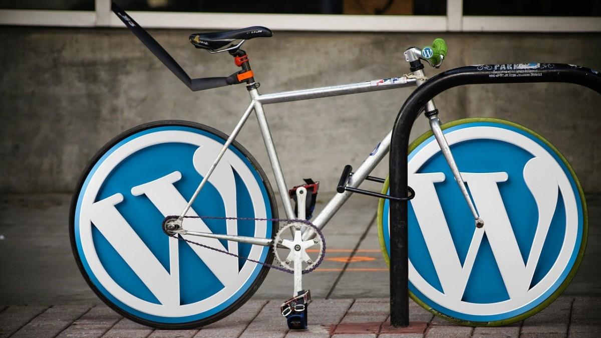 Работаем с метаданными терминов таксономий в WordPress
