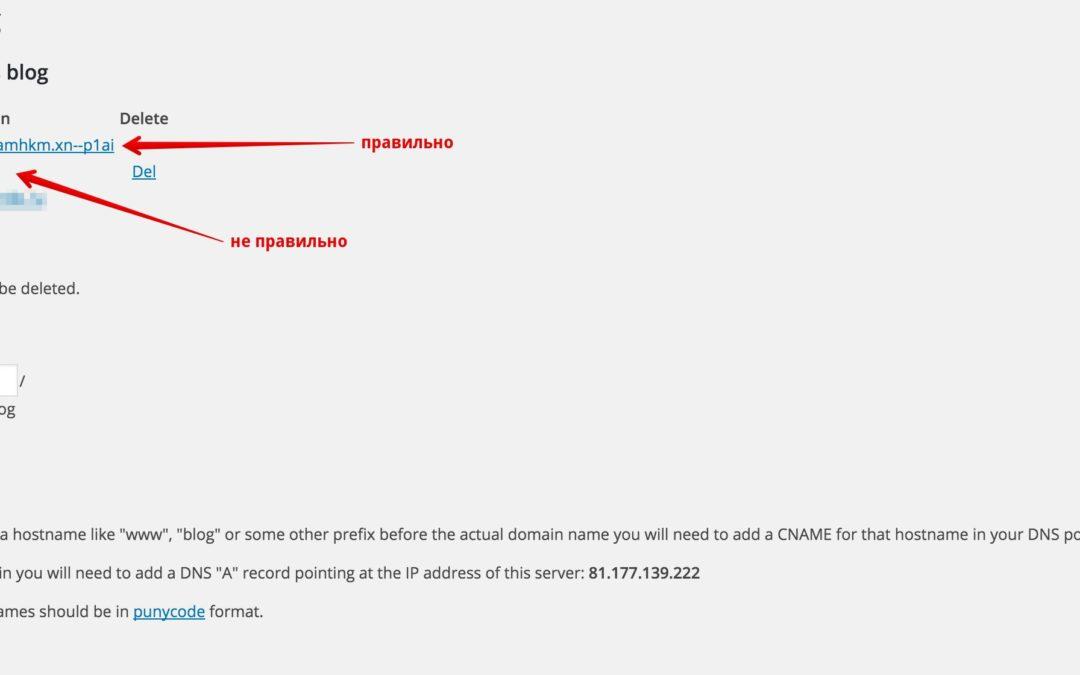 Кириллические домены и WordPress Multisite (режим сети)