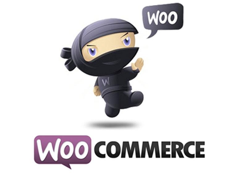 Как найти причину проблемы в WooCommerce (первичная диагностика)?