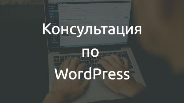 Консультация по WordPress